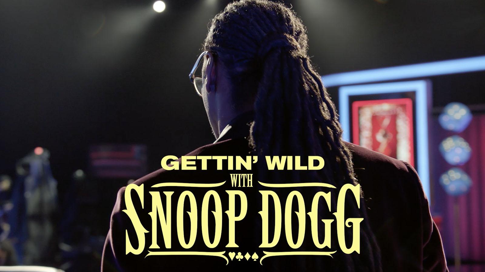 snoop dogg the jokers wild wiki